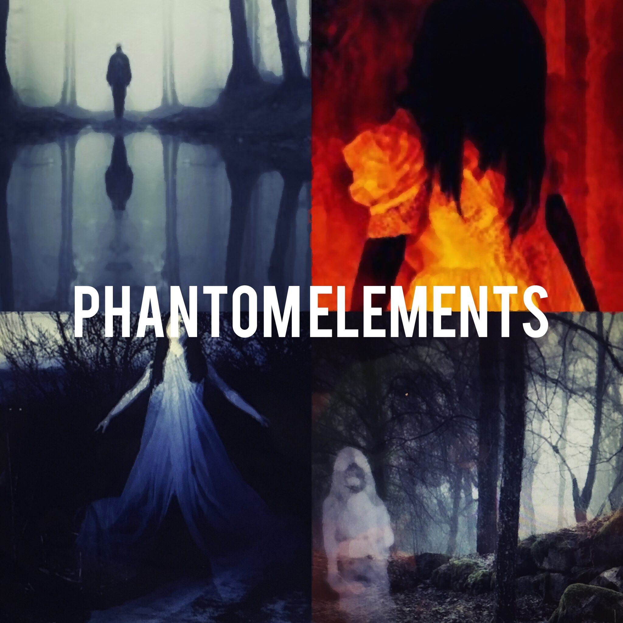 Phantom Elements